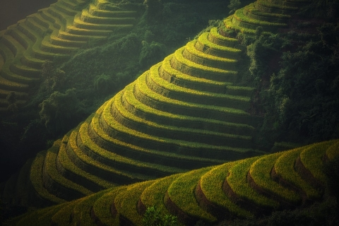 agriculture-1822443_960_720